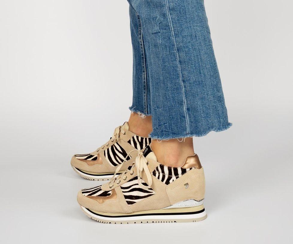 58746-P Zebra CAS&SPORT 2