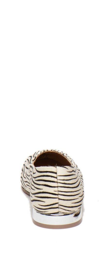 59843-P Zebra BALL&MOCC 4